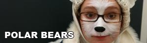 Polar Bears Link