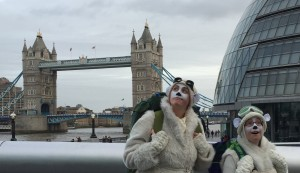 Bears at Tower Bridge
